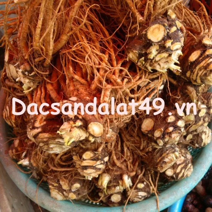 dac-san-da-lat-49 (15)