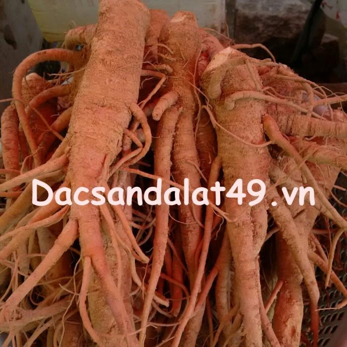 dac-san-da-lat-49 (34)