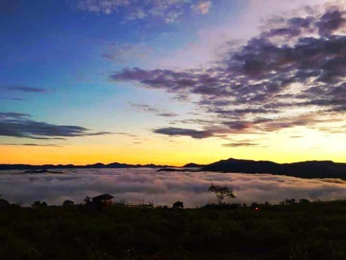 Đi săn mây tại đồi chè cầu đất đà lạt
