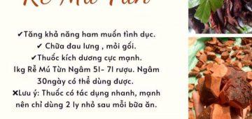 Cây mú từn thảo dược tình yêu – Đặc sản rừng đà lạt