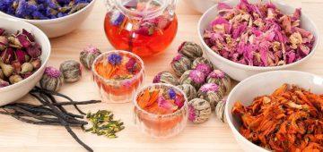 Khám phá các loại trà hoa tốt cho sức khỏe nên uống mỗi ngày